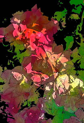 Rose 153 Art Print by Pamela Cooper