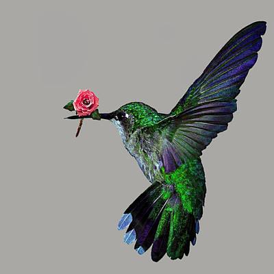 Rose Baring Bird Art Print by Carly Ralph