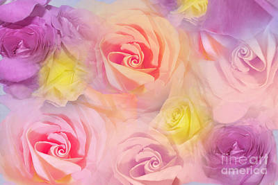 Photograph - Rose Bouquet by Cindy Lee Longhini