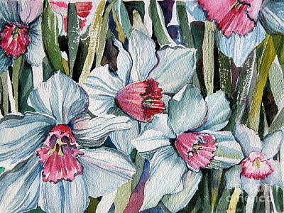 Spring Bulbs Painting - Rose Cupped Daffodils by Mindy Newman