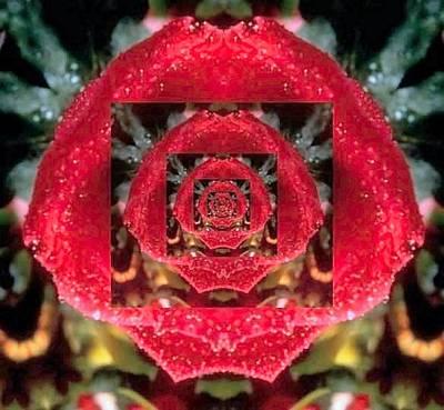 Rose Cut Original by Cathy Blake