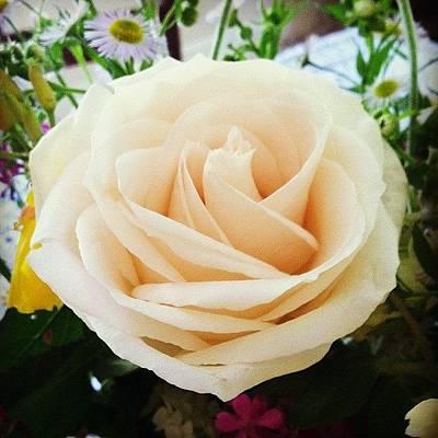 Bouquet Wall Art - Photograph - #rose #flower #pink #pretty #bouquet by Gabrielle Rich