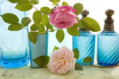 Coloured Glass Photograph - Rose Flowers by Erika Craddock
