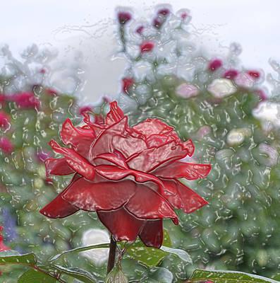 Rose Forever Art Print by Vijay Sharon Govender