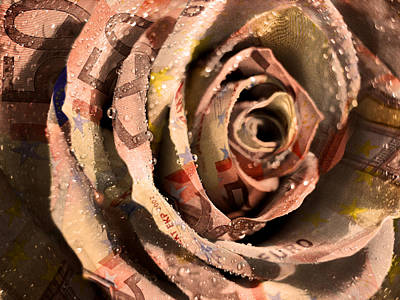 Photograph - Rose Money by Mariella Wassing