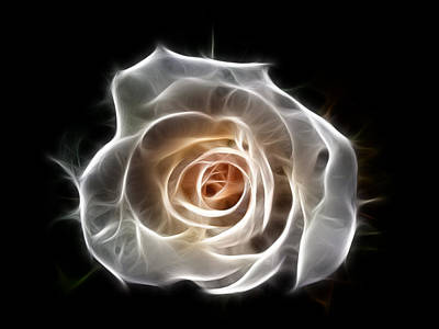 Rose Of Light Art Print