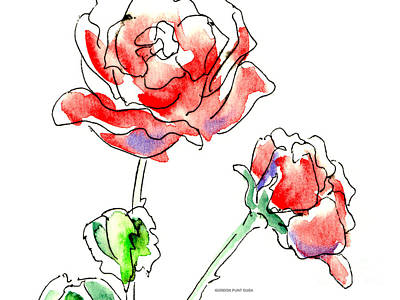Painting - Rose Paintings 1 by Gordon Punt