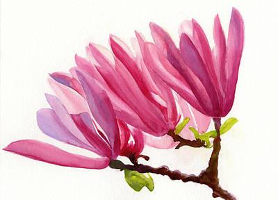 Rose Violet Magnolia Art Print by Sharon Freeman