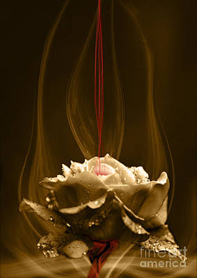 Digital Art - Rose With Red Flow by Johnny Hildingsson