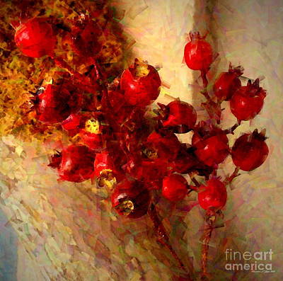 Photograph - Rosehips by Christine S Zipps