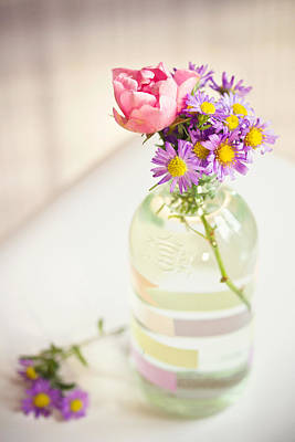 Stamen Photograph - Roses And Aster In Glass Bottle by Helena Schaeder Söderberg