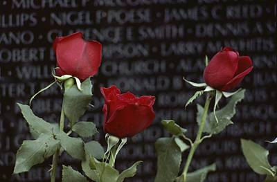 Roses Glow Against The Black Granite Art Print by Karen Kasmauski