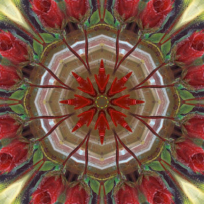 Digital Art - Rosette by Kathy Sheeran