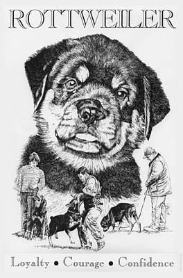 Rottweiler Dog Drawing - Rottweiler by Patrice Clarkson