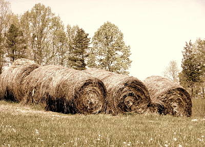 Photograph - Round Bales by Cindy Wright
