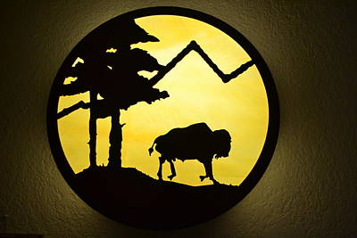 Photograph - Round Buffalo by Sharon Farris