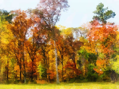 Photograph - Row Of Autumn Trees by Susan Savad