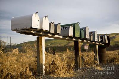 Mail Box Photograph - Row Of Mailboxes, Palouse, Washington by Paul Edmondson