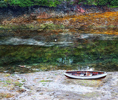 Red Roses - Rowboat in the Slough by Michele Cornelius