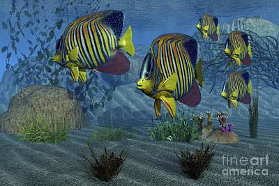 Aquatic Digital Art - Royal Angelfish Shimmer by Corey Ford