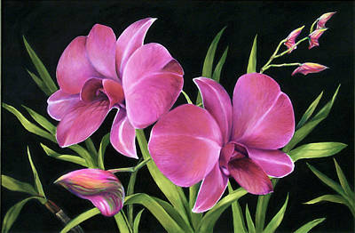 Art Print featuring the painting Royal Pink Orchids by Nancy Tilles