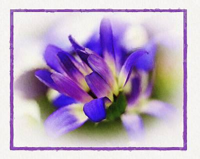 Royal Purple Art Print by Judi Bagwell