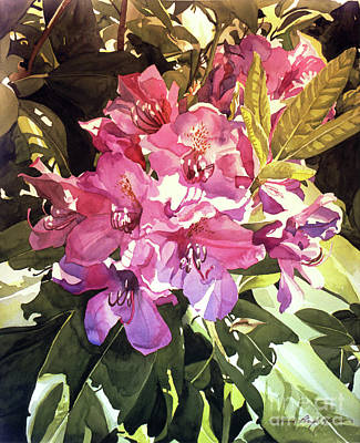 Painting - Royal Rhododendron by David Lloyd Glover
