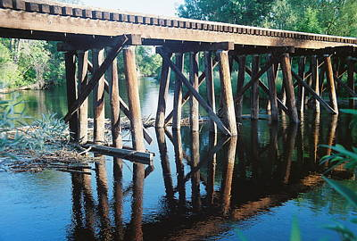 Photograph - Rr Tressel 3 by Trent Mallett