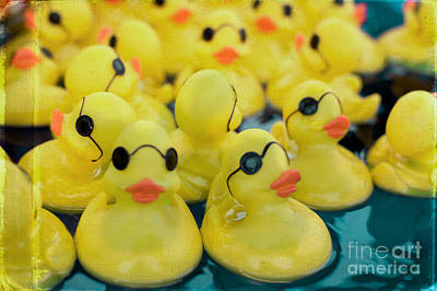 Rubber Ducks Art Print by Kim Fearheiley