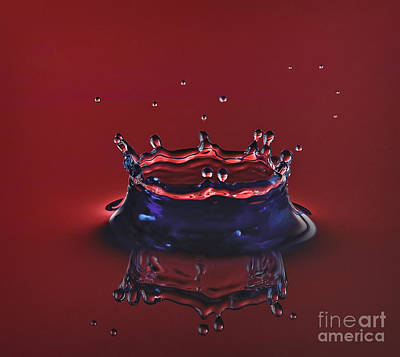 High Speed Photograph - Ruby Red Crown by Susan Candelario