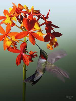 Digital Art - Ruby Throated Hummingbird by IM Spadecaller