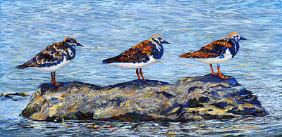 Painting - Ruddy Turnstones by AnnaJo Vahle