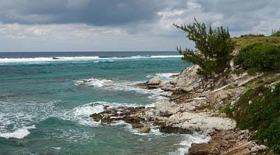 Photograph - Rugged Coastline by Michael Flood