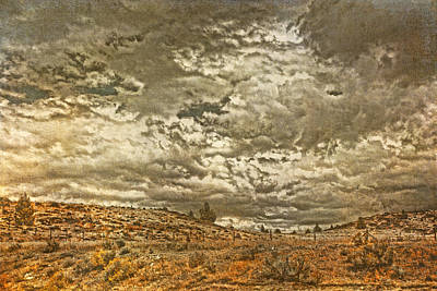 Rugged Country Art Print by Bonnie Bruno
