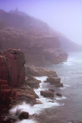 Rugged Seacoast In Mist Art Print