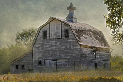 Rural America IIi Art Print by Christine Belt