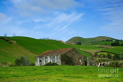 Pau Photograph - Rural Landscape by Gaspar Avila