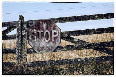 Stop Sign Photograph - Rural Stop by James Bull
