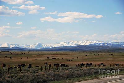 Rural Wyoming - On The Way To Jackson Hole Art Print by Susanne Van Hulst