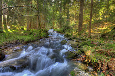 Photograph - Rushing Mountain Stream by Sean Allen