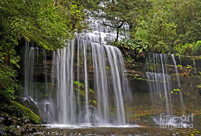 Russell Falls Art Print by Raoul Madden