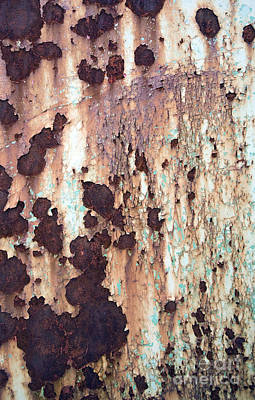 Photograph - Rust 3 by Glennis Siverson