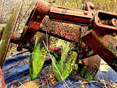 Photograph - Rusted Farm Tools by Carla Parris