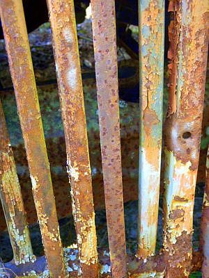 Photograph - Rusted Grille by Carla Parris