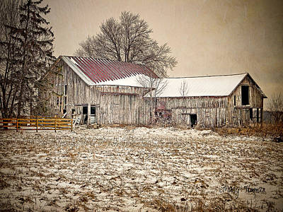 Art Print featuring the photograph Rustic Barn by Mary Timman