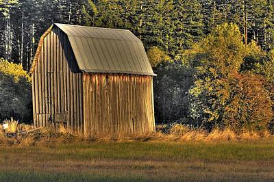 Photograph - Rustic Barn by Tyra  OBryant