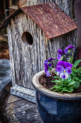 Photograph - Rustic Bird House by James Woody