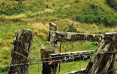 Photograph - Rustic Fence by Marilyn Wilson
