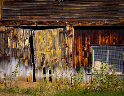 Photograph - Rustic Hoop by David Patterson