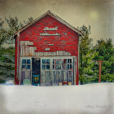 Art Print featuring the photograph Rustic Shed by Mary Timman